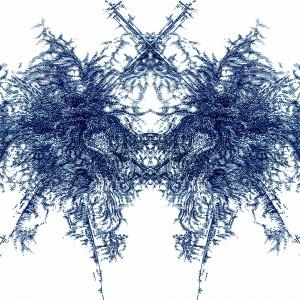 Mecon 3, Digital/Analog Composite Image, 2007